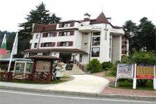 Отель Alpin 4*