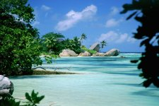 Отель The Palm Seychelles, Bel Ombre 4*