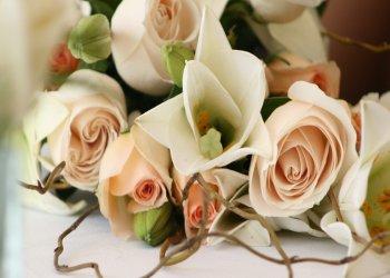 Официальная свадебная церемония в муниципалитетах Кипра