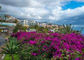 Мадейра – остров вечной весны