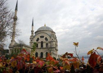 Чем удивит зимний Стамбул